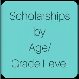 Scholarships by Age/Grade Level