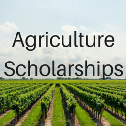 Scholarships for students studying Agriculture, Horticulture, Forestry, and other related majors.
